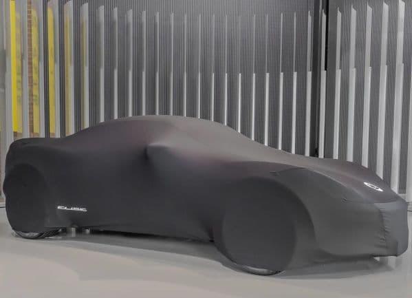 Lotus Elise Indoor Car Cover